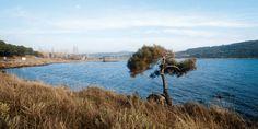 Muharebe Alanları Gezi Güzergâhı Üzerinde Yer Alan Önemli Mevkiler (Gelibolu - Eceabat - Tarihi Milli Park) - Bölüm 7 - http://canakkalesehitlikgezileri.com/muharebe-alanlari-gezi-guzergahi-uzerinde-yer-alan-onemli-mevkiler-gelibolu-eceabat-tarihi-milli-park-bolum-7/