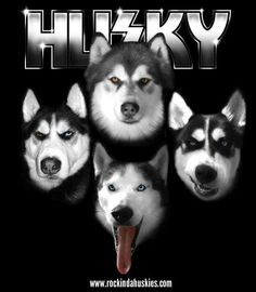 KISS HUSKIES