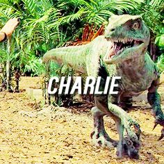 Kid Of The Squad  Raptor Charlie Jurassic World