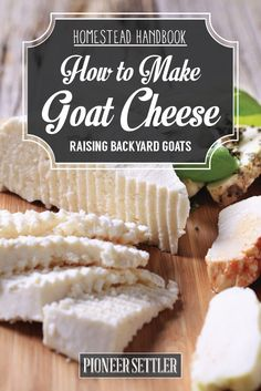 How to Make Goat Cheese A benefit of raising goats is you get to make goat cheese from all the fresh goat milk! Learn how to make goat cheese from dairy goats with this homesteading guide. Goat Milk Recipes, Goat Cheese Recipes, Food Storage, Fromage Cheese, Cocina Diy, Raising Goats, Milk And Cheese, How To Make Cheese, Making Cheese