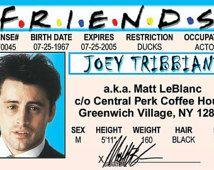 Matt LeBlanc Joey from the 1994 hit TV Show Friends Celebrity Drivers License fake identification ID Card Halloween Costume New York City
