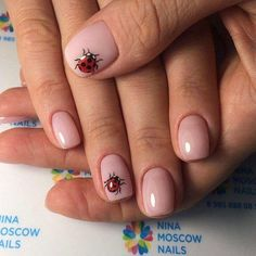 70 Easter Nail Designs to Try This Year Funky Nails, Trendy Nails, Cute Nails, Gelish Nails, Manicure And Pedicure, My Nails, Animal Nail Designs, Nail Art Designs, Ladybug Nail Art