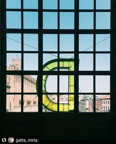 #Repost @gatta_mirta  D come destate #MyBiennaleRN #BiennaleDisegnoRimini #rimini#myrimini #bdr2016 #biennaledisegno