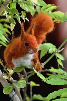Needle Felted Wool Animals-Red squirrel- Soft sculpture-Collectible artist animals-needle felt by Daria Lvovsky