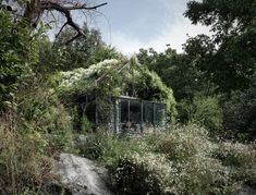 the-green-box-house