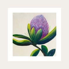 The Up-Close collection is looking at the environment and the beauty around us. Mother nature is the true artist creating all our gorgeous colourful living plants that bring joy into our world. Being open to allow change. In local South African tradition, the protea represents hope and change. All Lelly Lou art prints are printed on high-quality matte paper, signed & numbered  by Lelly herself and embossed with Lelly Lou signature stamp. Limited edition of 250