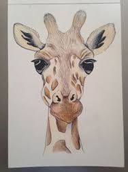 Image result for easy drawing ideas for teen girls