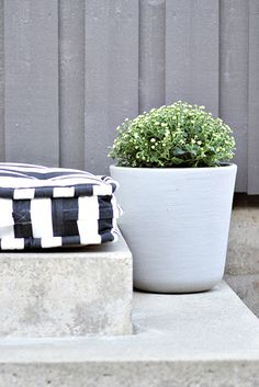 Fill & cover one of the garden boxes & put cushions on it?
