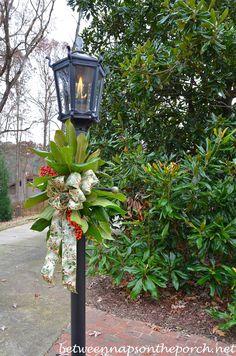 magnolia leaves around a lamp post