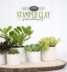DIY Stamped Clay Succulent Pots - Damask Love