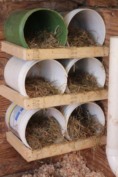 Summary: At the onset of building chicken coops, one must lay out chicken coop blueprints. The chicken coop designs should cater to all the aspects vital for chicken farming. Backyard Chicken Coop Plans, Cheap Chicken Coops, Chicken Coup, Chicken Garden, Building A Chicken Coop, Chicken Runs, Chickens Backyard, Chicken Coop Pallets, Small Chicken