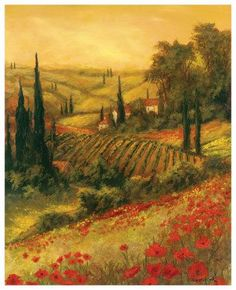 Tuscany  Poppies :-)