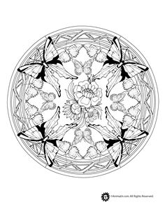Animal Mandala Coloring Pages Butterfly Mandala Coloring Page ...