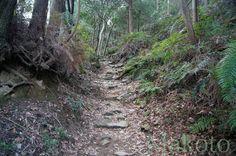Trail to Sankakuji (Temple 65).