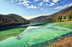 turquoise, tree, limitless, deep, cloud, spring, marsh.