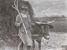 Die Kunst in der Photographie : 1907 Photographer: Ludwig Petschka Title: Der Kleinhäusler