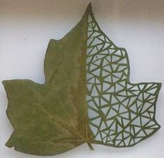 spanish artist lorenzo duran uses leaves as the canvas for his cutaway leaf art. Dry Leaf Art, Leave Art, Spanish Artists, Arte Popular, Sculpture, Nature Crafts, Art Plastique, Photomontage, Caricatures