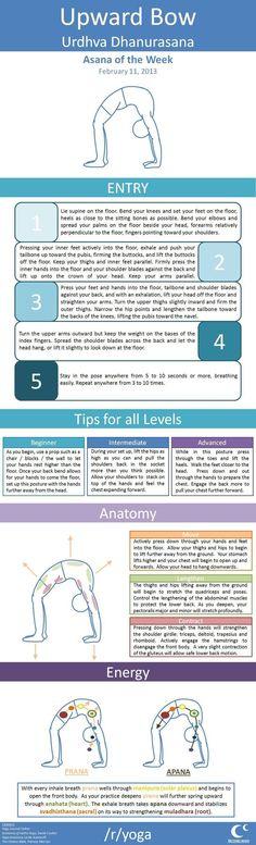 upward bow info graphic #yoga