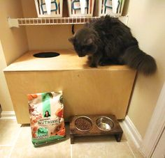 DIY Wooden Top Entry Cat Litter Box - Charleston Crafted