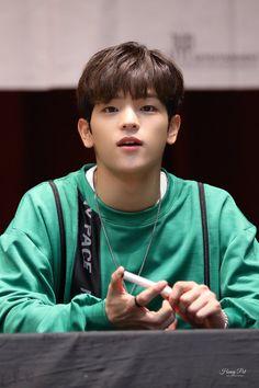 Lee Min Ho, Daejeon, Kim Woojin Stray Kids, Kim Woo Jin, Korean Boy, Kid Memes, Lee Know, Kpop Groups, Survival