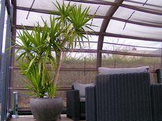 Store pare soleil couverture de terrasse