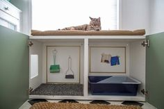 Cats make great companions, but the odor and mess of their litter box isn& always ideal. See how we turned a standard laminate cabinet into a kitty station complete with litter box containment, storage and an all-important nap spot. Animal Room, Hidden Litter Boxes, Diy Litter Box, Litter Box Enclosure, Kitty Litter Boxes, Dog Proof Litter Box, Cat Litter Cabinet, Cat Toilet Training, Kitten Litter Box Training