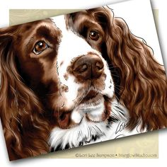 Brittany Spaniel Art Note Cards by www.StarglowStudio.com/shop