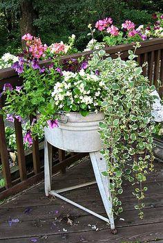 Vintage washtub planter.  Fabulous!