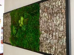 Bark and moss wall art www.wabimoss.com