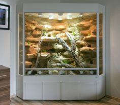 Modern & Unique Glass Terrarium Ideas for Plant & Reptiles - Home Decor Ideas Terrarium Diy, Terrariums, Mason Jar Terrarium, Terrarium Reptile, Hanging Terrarium, Vivarium, Paludarium, Bearded Dragon Habitat, Bearded Dragon Cage