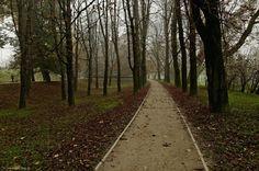 Park zamkowy w Raciborzu