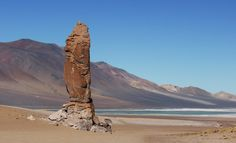 Our backyard for a day - Atacama, Chile