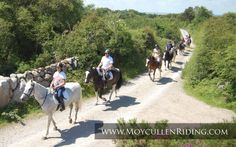 Horse Riding for all the Family with Scenic Bog Road & Beach Trekking with Moycullen Riding Centre Trail Riding, Horse Riding, Riding Holiday, Riding Lessons, Cultural Experience, Connemara, Travel Info, Stables, Trekking