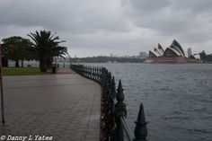 Canon 400d - 18-55 mm lens - 28mm - ISO 200 - F4 - 1/1000 - Late morning / early afternoon - cloudy / rainy / crappy - hand held - Sydney Harbour - 09/02/2015