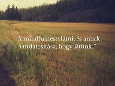 A legfontosabb, hogy tudjuk, mi a legfontosabb. Mindfulness, Nature, Blog, Minimalism, Naturaleza, Blogging, Nature Illustration, Off Grid, Consciousness