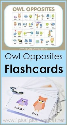 Owl Opposites Flashcards ~ what a cute way to teach opposites! Adorable owls showing many different opposite words {hot - cold, short - tall, wet - dry and many more!} Free printable flashcards are great for early childhood education!