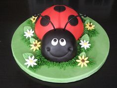 could make a lady bug like this and then have it on a cake that is shaped like a leaf