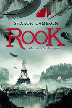 rook by shaon cameron 2015 young adult books