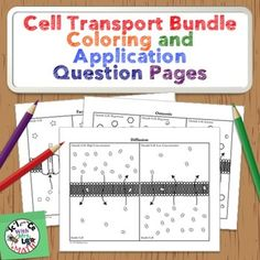 Cell Transport Coloring Activity Bundle: Membrane Osmosis,