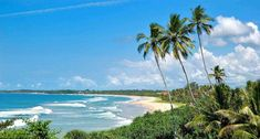 Sri Lanka is one of the most beautiful places that I have visited. From its white, pristine beaches to the lush, verdant rainforests; Sri Lanka is truly stunner. Sri Lanka Holidays, Arugam Bay, Free Beach, Tourist Places, Destin Beach, Turquoise Water, Beach Photos, Beautiful Places, Surfing