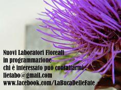 Nuovi Laboratori Floreali