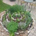 spiral herb bed. i have heard of this from a native indian perspective.