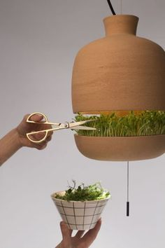 Freshen up your plants and garden with these designs! Contemporary Planters, Unique Lamps, Grow Your Own Food, Planter Boxes, Wood Planters, Growing Plants, Food Design, Indoor Plants, Cool Ideas