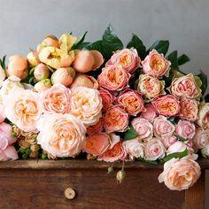 Wedding Flower Ideas: Tips For Choosing Your Bridal Bouquet - Wedding Flowers - May Flowers, Fresh Flowers, Beautiful Flowers, Deco Floral, Floral Design, Deco Champetre, Diy Wedding Flowers, Floral Arrangements, Planting Flowers