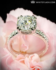 this is the most absolutely gorgeous engagement ring I've ever seen. So perfect for me!! <3 hint hint to future fiance/husband ;D Like, fo real fo real.