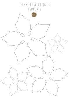 https://flic.kr/p/q8QJZL | Poinsettia flower template III copy