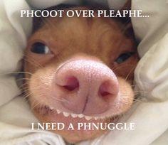 Tuna the dog as Phteven.