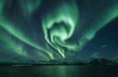 Lyngen Municipality, Norway: Nortern light in Lyngen