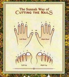 The Sunnah way of cutting the nails. Islam - Crazy islam - everything is physical rule right down to cutting nails. Islam Hadith, Islam Muslim, Allah Islam, Islam Quran, Muslim Love Quotes, Islamic Love Quotes, Religious Quotes, La Ilaha Illallah, Moslem