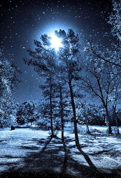 """""""The winter sky above us was shining in moonlight, and everywhere around us the silence of midnight, and we had gathered snowflakes; remember the soft light of starlight on snow. Beautiful Moon, Beautiful World, Beautiful Places, Beautiful Flowers, Snow Scenes, Winter Scenes, Pretty Pictures, Cool Photos, Amazing Photos"""